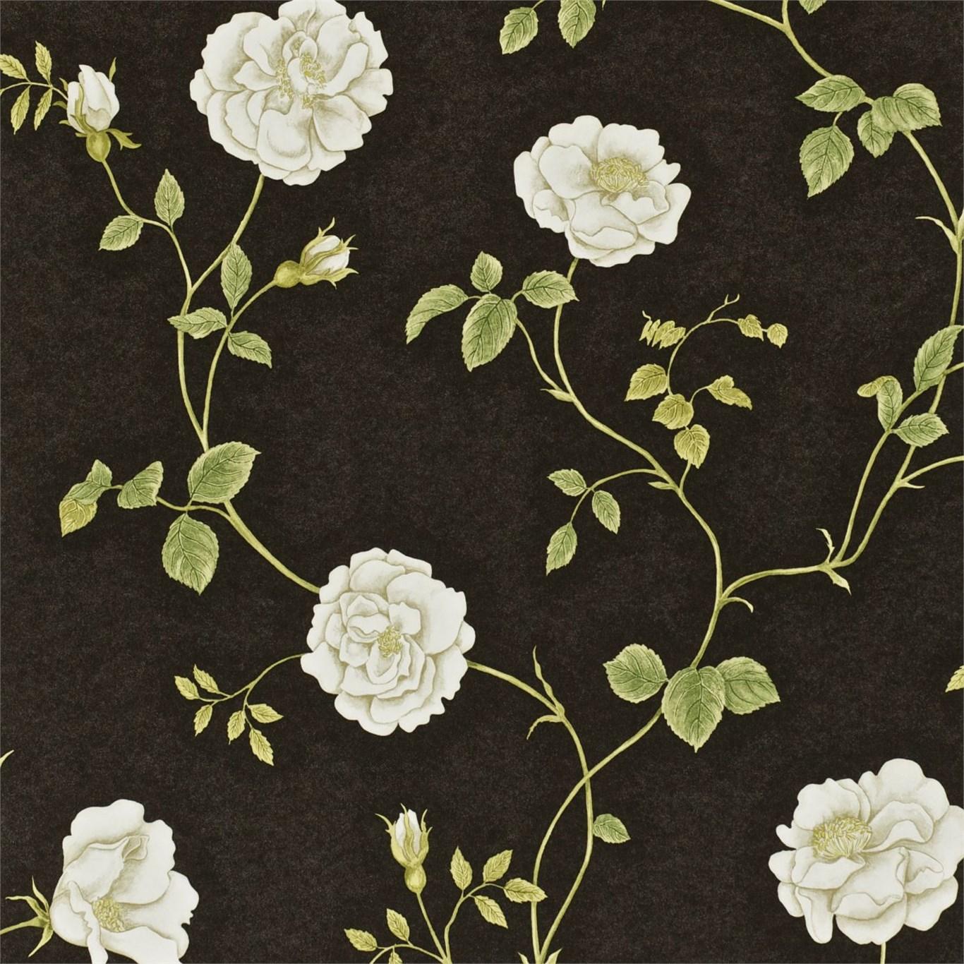 Английские обои Sanderson,  коллекция Wallpapers from a Painters Garden, артикулDAPGRO104