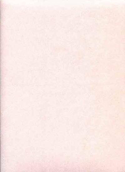 Американские обои Wallquest,  коллекция Victoria Lane, артикул57-51973