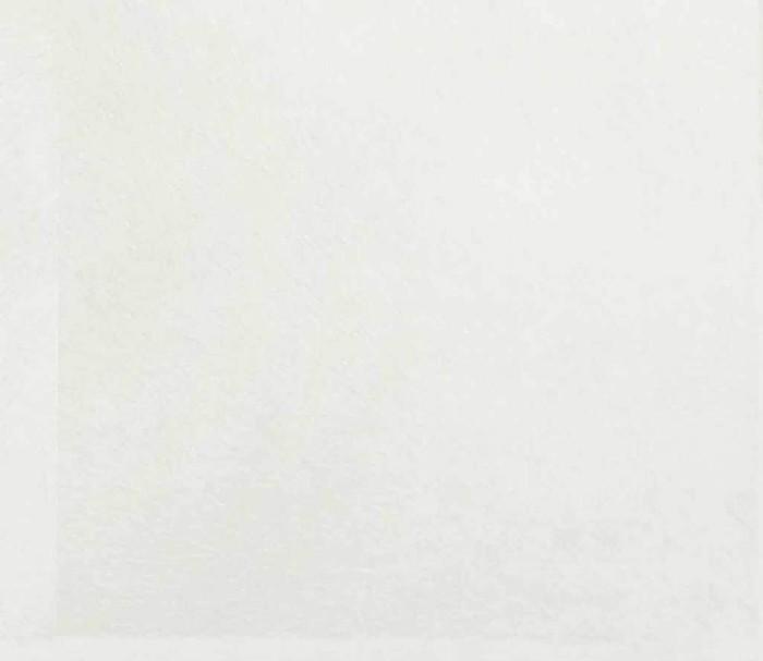 Бельгийские обои Khroma,  коллекция Guy Masureel - Victoria, артикулVIC501