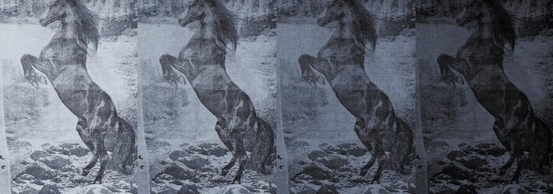 Итальянские обои Wall & deco,  коллекция Life 13, артикулWDEC1303