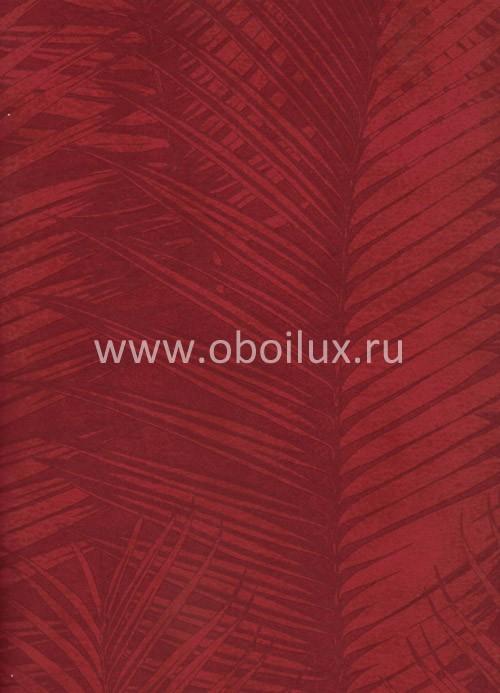 Американские обои York,  коллекция Antonina Vella - Botanica, артикулVB6718