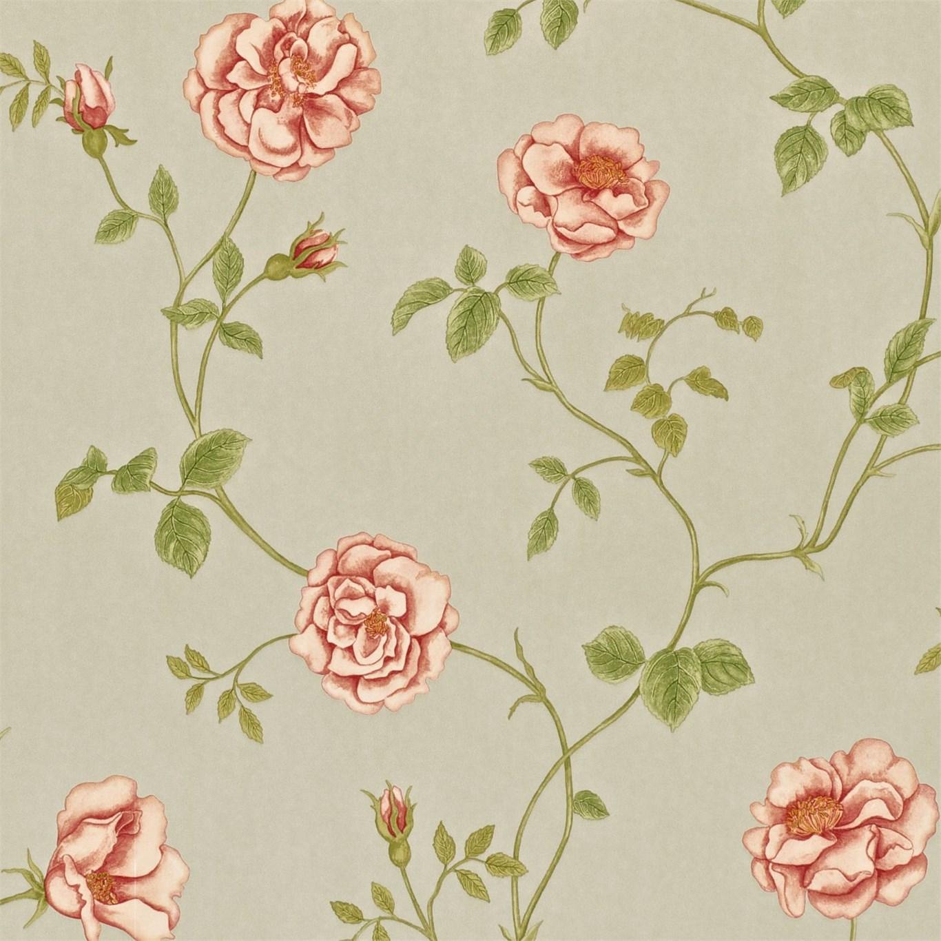 Английские обои Sanderson,  коллекция Wallpapers from a Painters Garden, артикулDAPGRO103