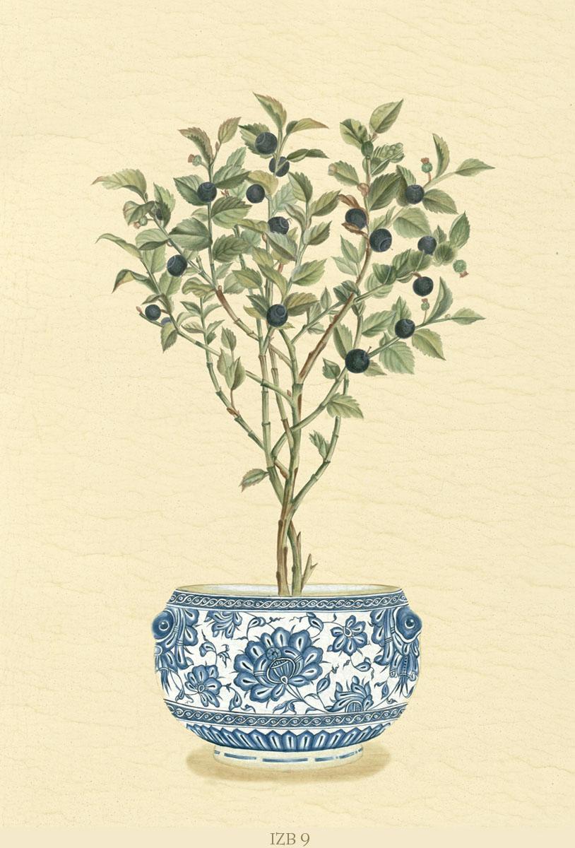 Английские обои Iksel,  коллекция Scenic & Architectural Wallpapers, артикулIznikBonsaisIZB9