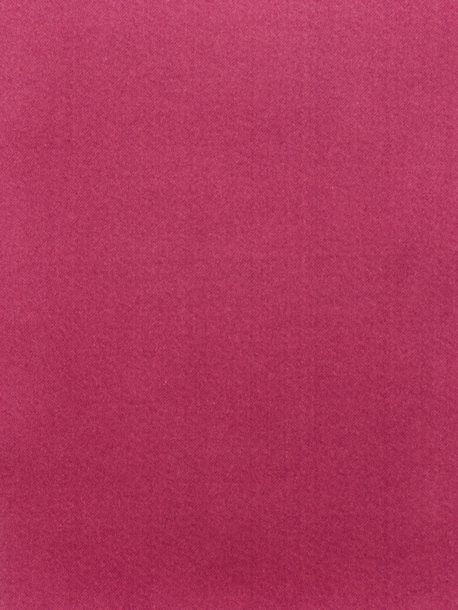02022 Raspberry