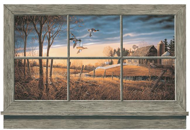 Американские обои York,  коллекция Lake Forest Lodge, артикулWD4302M