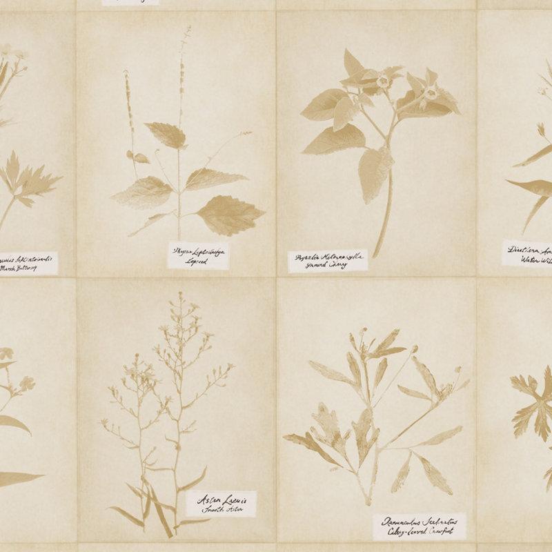 Американские обои Ralph Lauren,  коллекция Serengeti Textures, артикулLWP65012W