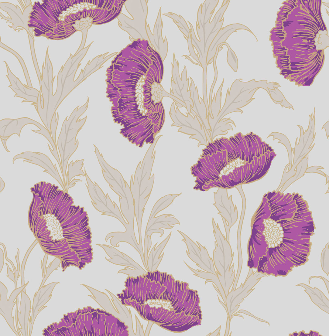Английские обои Cole & Son,  коллекция Collection of Flowers, артикул81/1004