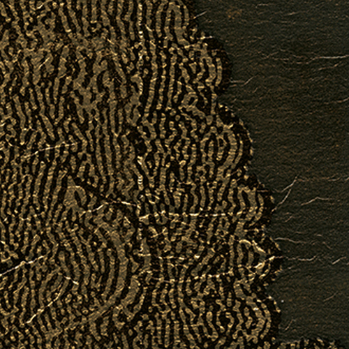 Французские обои Elitis,  коллекция Mille Millions, артикулVP87104