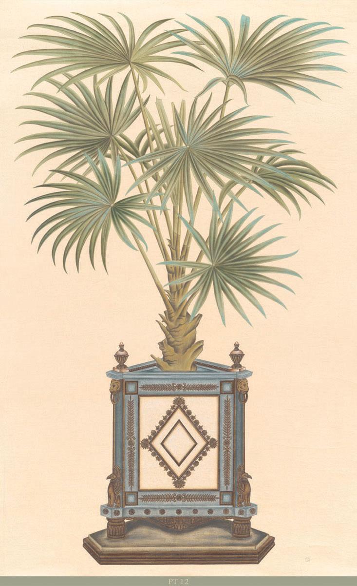 Английские обои Iksel,  коллекция Scenic & Architectural Wallpapers, артикулPottedPalmsPT12
