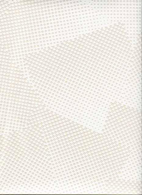 Французские обои Caselio,  коллекция Virtual, артикулVRL5954-00-12