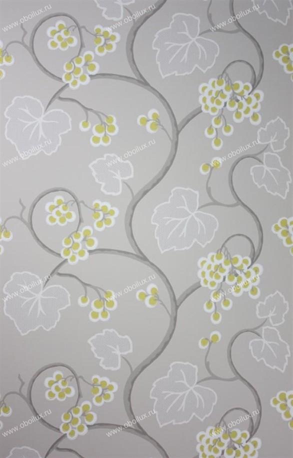 Английские обои Osborne & Little,  коллекция Persian Garden, артикулW6494-01