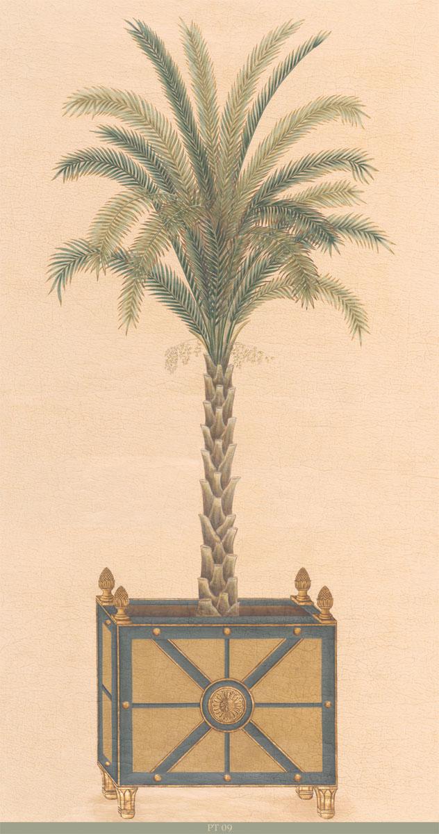 Английские обои Iksel,  коллекция Scenic & Architectural Wallpapers, артикулPottedPalmsPT09