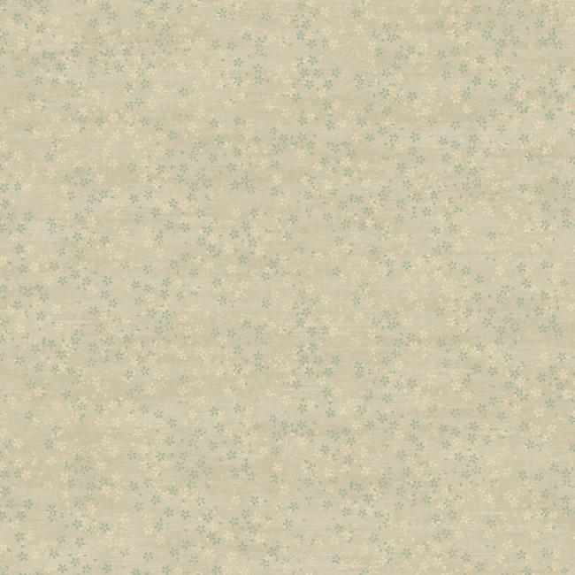 Американские обои York,  коллекция Carey Lind - Elements, артикулRL1106
