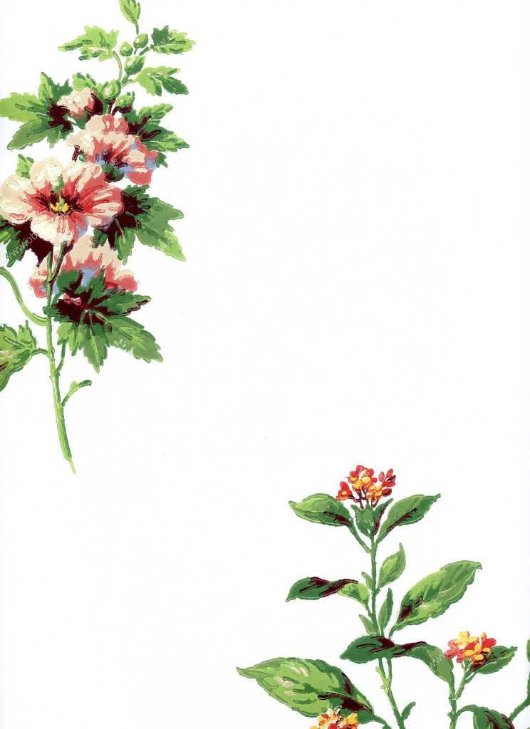 Американские обои York,  коллекция Ashford House - Flowers S.E., артикулWU0720