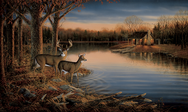 Американские обои York,  коллекция Lake Forest Lodge, артикулRA0170M