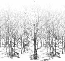 ОБОИ ISIDORE LEROY NATURELS арт. 6241604