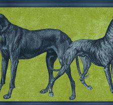 ОБОИ TENUE DE VILLE ODE арт. Canis Sauterne/ODE-191908