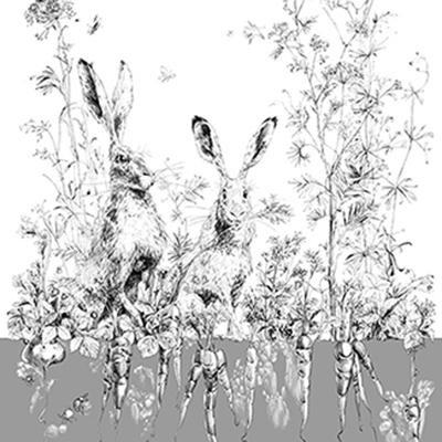 ОБОИ EDMOND PETIT CATHERINE GRAL арт. RM101-02