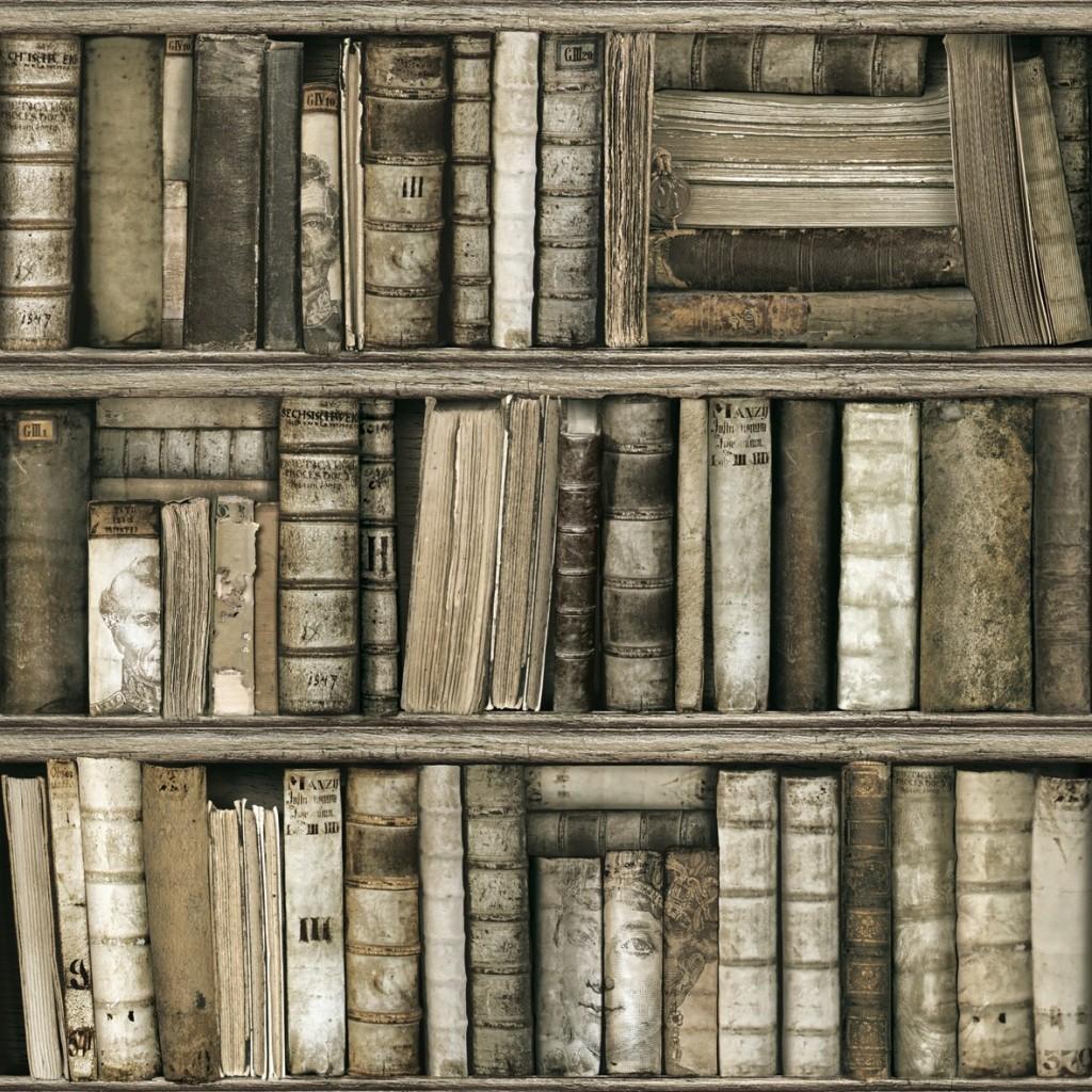 предсердие фотообои имитация книжных полок аубреции семян