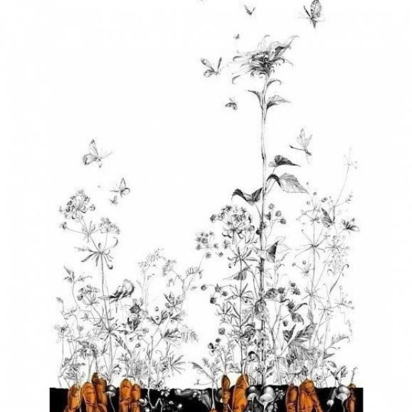 ОБОИ EDMOND PETIT CATHERINE GRAL арт. RM105-05